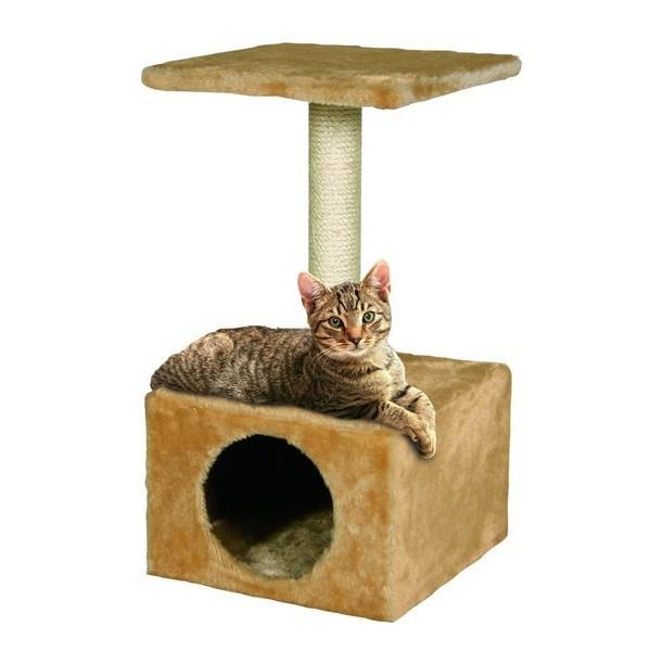 pisica ascutire gheare