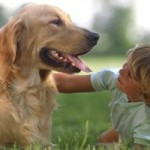 Animal de companie pentru familiile cu copii mici