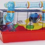 Cum sa te ocupi cat mai bine de hamsterul tau?